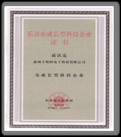乐清市成长科技型企业